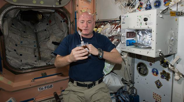 Exploring the ground truth: NASA's Twin Study investigates metabolites