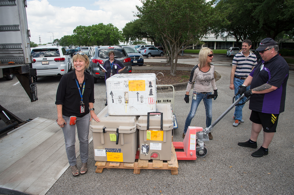 From left, Evans, Donna Castillo and Righter greet the delivery driver and meteorites at JSC. After a long, frozen journey via refrigerated cargo ships from McMurdo Station, Antarctica, the samples are home in the Meteorite Processing Lab in Building 31. Image Credit: NASA/James Blair